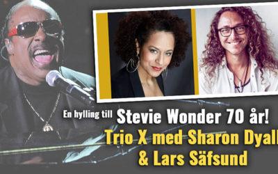 Stevie Wonder 70 år!